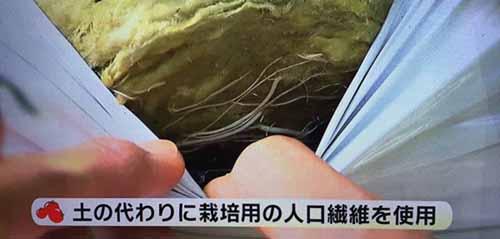 https://img.cc0.cc/hatena/?u=nanigoto/2015/20151104_1500_13.jpg