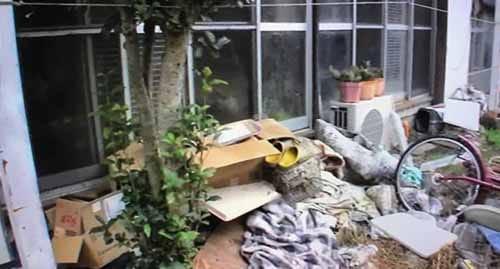 【埼玉県深谷市】まるで猫屋敷!猫120匹の飼い主が逮捕され放置される事態:ビビット【2016/11/21】