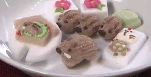 「うりぼうシュガー」がカワイイ!という話:ZIP!【2018/12/26】
