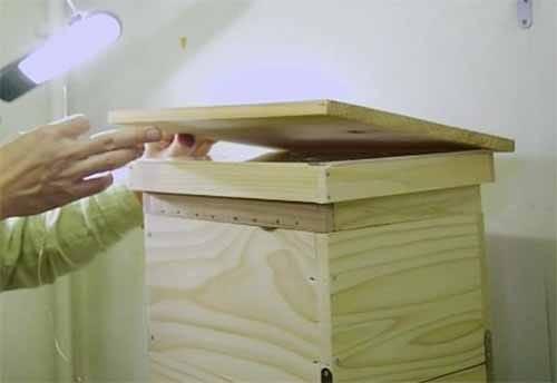 ミツバチがスズメバチを倒す方法:ヘウレーカ!【2019/10/16】