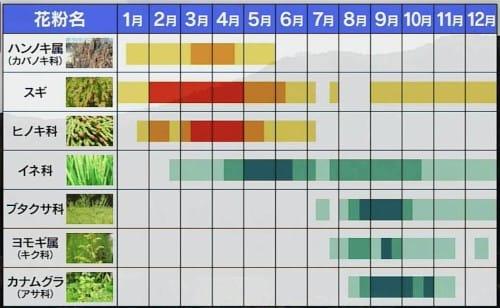 日焼けマシンで花粉症は改善する!?という話:初耳学【2020/05/24】