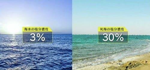 塩分濃度の比較