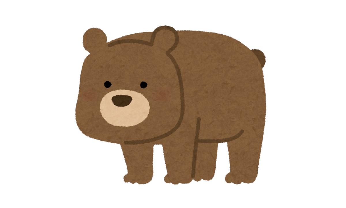 自由自在にヌンチャクを操るクマの話:スッキリ!【2020/07/20】